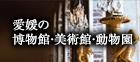 愛媛の博物館・美術館・動物園