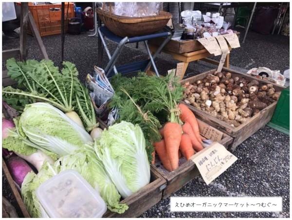 第6回 えひめオーガニックマーケット~つむぐ~