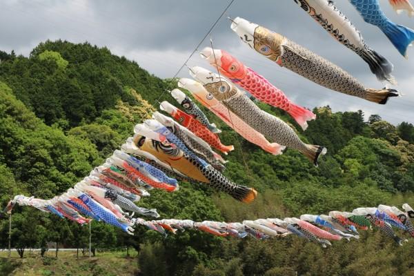 大川鯉のぼり祭