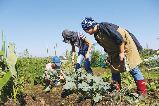 体験農園サービス開始!