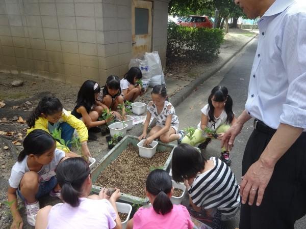 第19回 サマースクール「愛媛の自然を学ぼう」