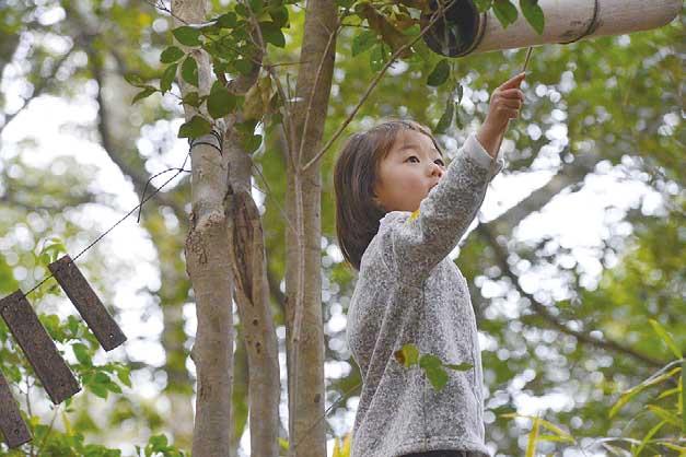 「森のようちえん」で園児募集中!