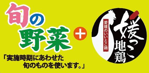 5月の料理講座~地産地消講座~旬の野菜+媛っこ地鶏 inヨンデンプラザ松山