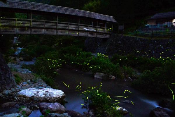 河辺ふるさとの宿 ホタルまつり
