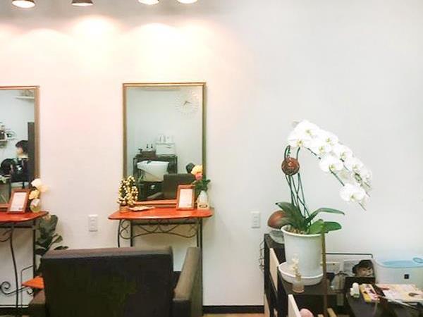 hair healing LIME