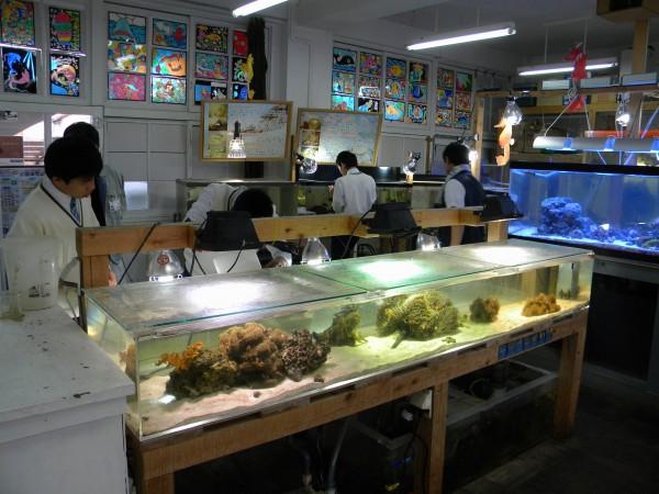 長高水族館