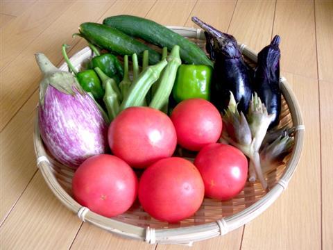 7月の料理講座 生産農家さん直伝!新鮮な夏野菜がたっぷり♪親子で楽しく七夕クッキング