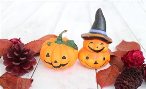 親子★無料★10月の料理講座「かぼちゃで簡単ハロウィンレシピ♪」inヨンデンプラザ松山