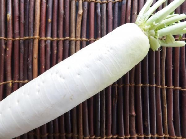 無料★1月の料理講座「大根1本使い切り料理」inヨンデンプラザ松山