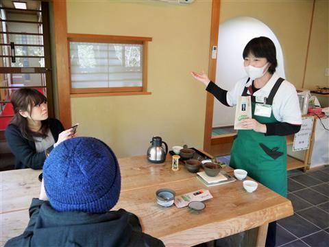 8月の新宮茶飲み比べ体験