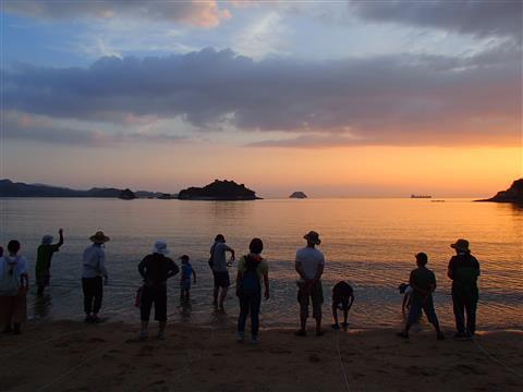 自然観察会(7)「夜の海辺の生き物ウォッチング」