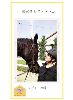 お得な乗馬キャンペーンを実施中!