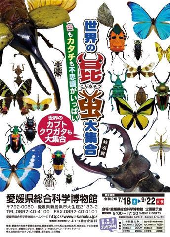 特別展「世界の昆虫大集合」