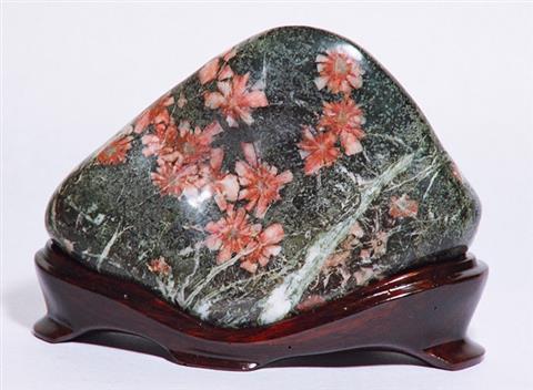 第一回日本観賞石展 in 四国