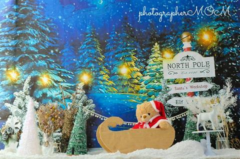 クリスマスフォトブース撮影会*photographerMOM*