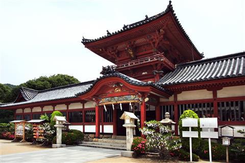 伊佐爾波神社の初詣