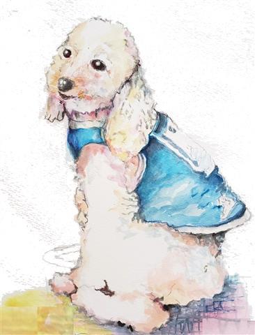犬を描く絵画展「チャリティー111」