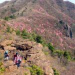 地元愛媛県の人気登山ガイド智さんと行く春のハジメテトザン 西赤石山