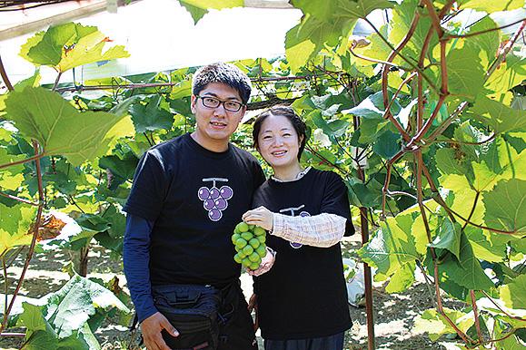「葡萄の木のオーナー制度」スタート