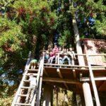 由良野の森プレーパーク