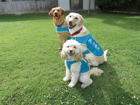 補助犬イベント「介助犬・聴導犬を知ってください」